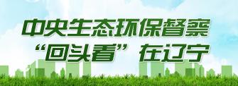 生态环保督察